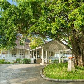 hillview-banyan-tree-seyseller-balayi-uzmani (8)