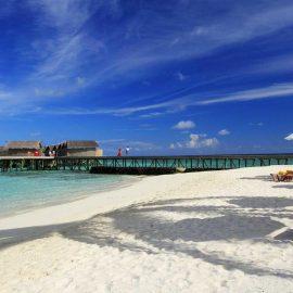 maldivler-centara-ras-fushi-balayi-uzmani (4)